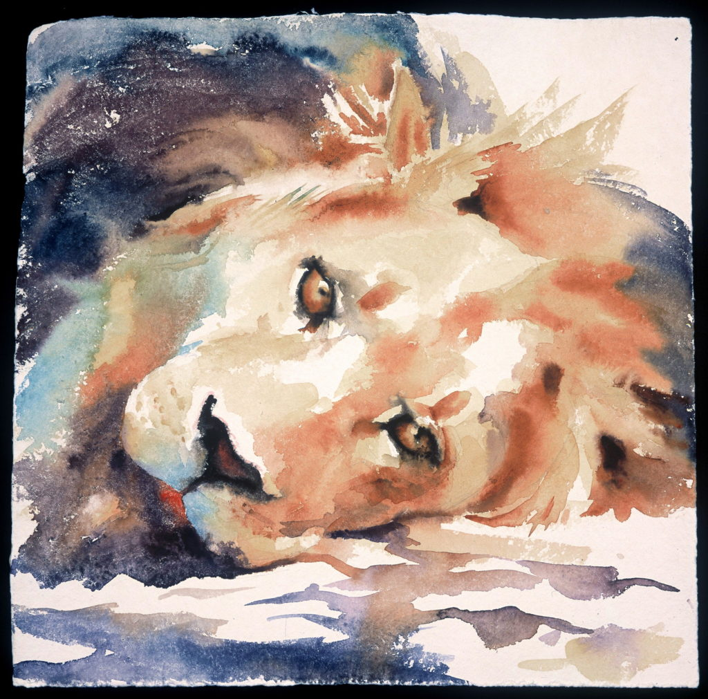Hazel Sloan watercolor animals 2