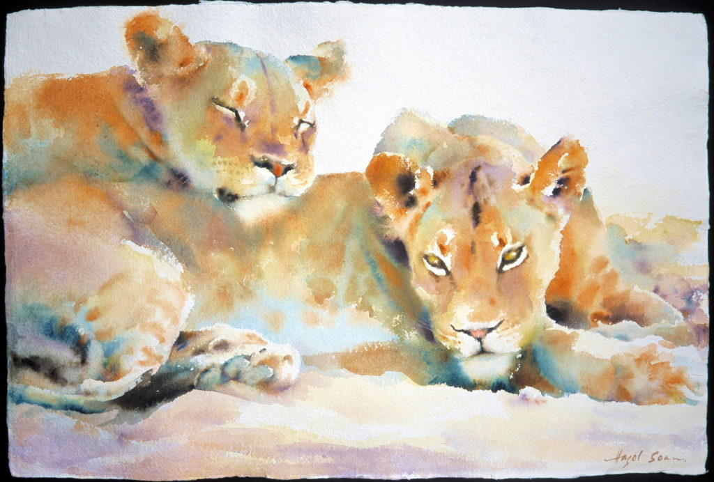 Hazel Sloan watercolor animals