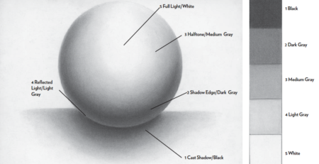 Lee Hammond: Drawing a Sphere allows you to draw the rounded parts of the face